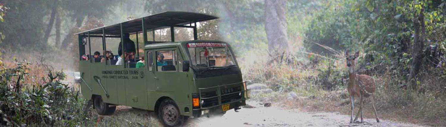 Dhikala Canter Safari Online Booking | Jim Corbett National Park Online Booking Website | India